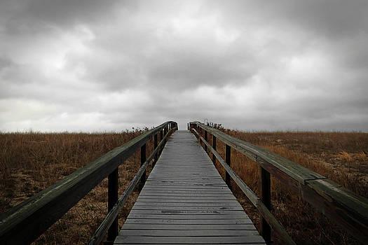 Boardwalk, Sandwich, Massachusetts by Brooke T Ryan