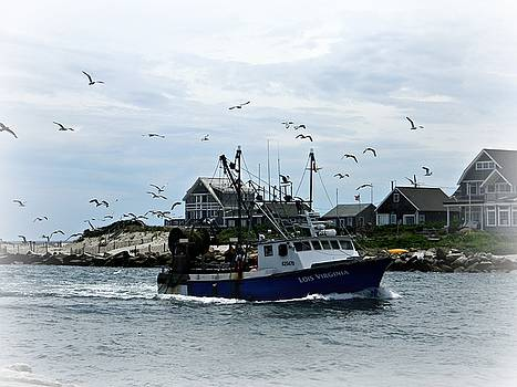 Boat and Gulls by Diane Valliere