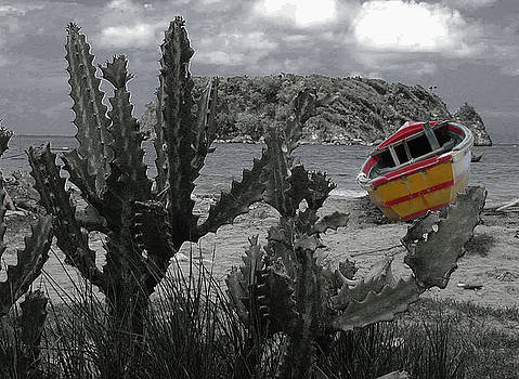 Boat on beach by Jim Wright