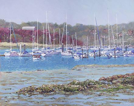 Boats at Hamble Marina by Martin Davey