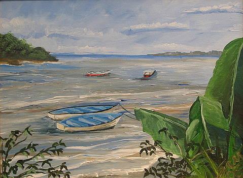 Boats down South by Samantha Rochard