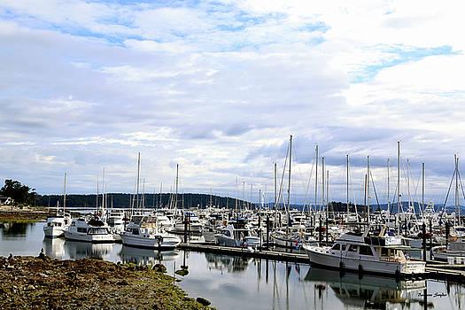 Boats Sidney Pleasure Boat Harbor British Columbia Canada 2 by Barbara Snyder