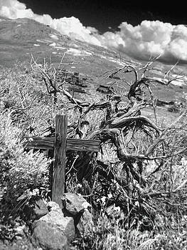 Gregory Dyer - Bodie Ghost Town Boot Hill