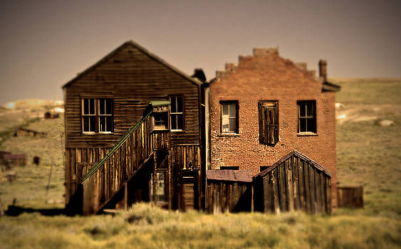 Bodie Siblings Back Door by Chris Brannen