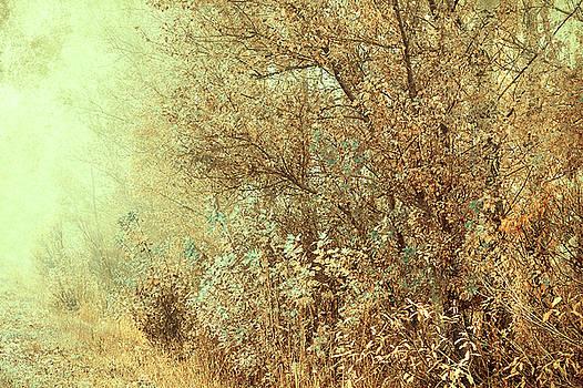 Jenny Rainbow - Bohemian Autumn