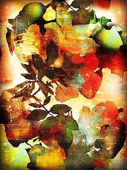 Bokeh Blossoms by Robin Regan