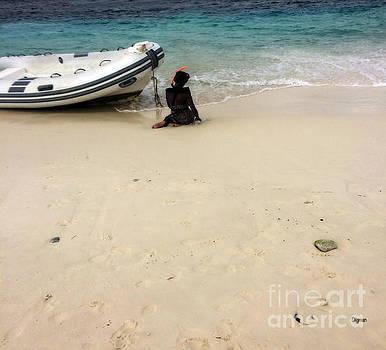 Bonaire  by Steven Digman