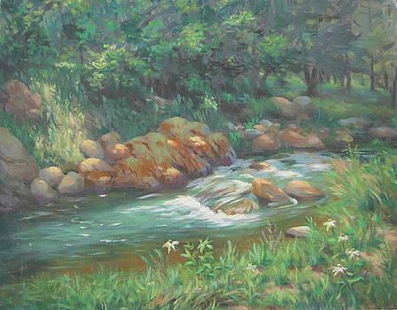Bonita Stream New Mexico by Texas Tim Webb
