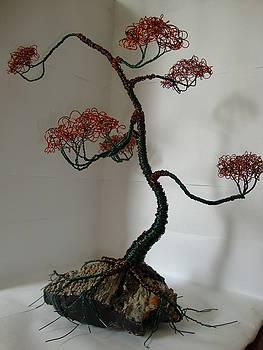 Bonsai Tree 1 by Scott Faucett