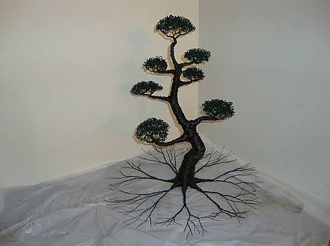Bonsai Tree Black by Scott Faucett