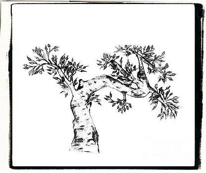 Bonzai Tree by John Krakora