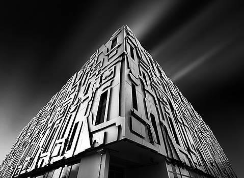 Borg by Ivan Vukelic