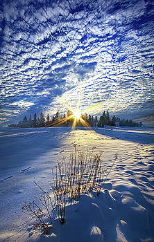 Born As We Are by Phil Koch