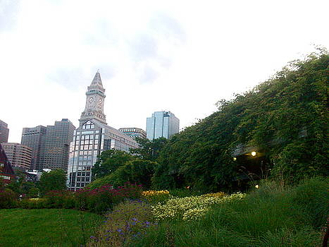 Boston from the Greenway Parks by Maria Mills