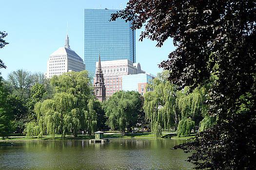 Boston Public Garden by Kathy Schumann