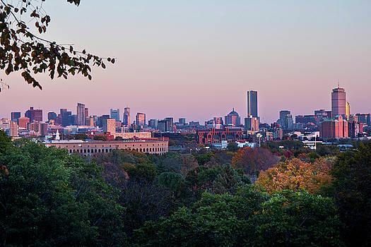 Boston Skyline From Mount Auburn Cemetery  by Joann Vitali