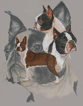 Boston Terrier with Ghost by Barbara Keith
