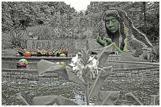 Botanical Garden by Dennis Baswell
