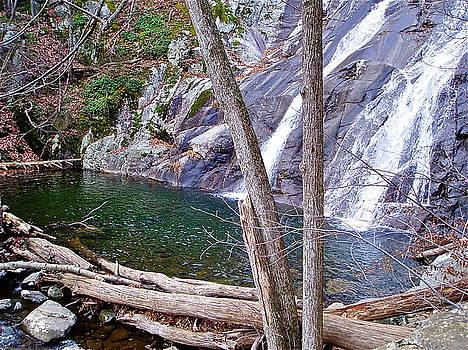Bottom of the Falls by E Robert Dee