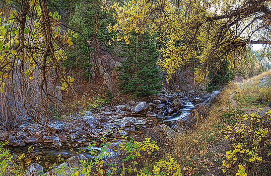 James BO  Insogna - Boulder Creek Autumn View