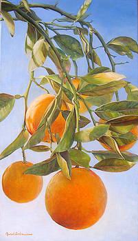 bouquet d Oranges by Muriel Dolemieux