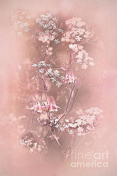Bouquet in Pastel Pink by Liz Alderdice
