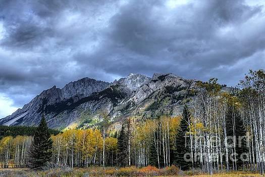 Bow Valley Parkway Banff National Park Alberta Canada IV by Wayne Moran