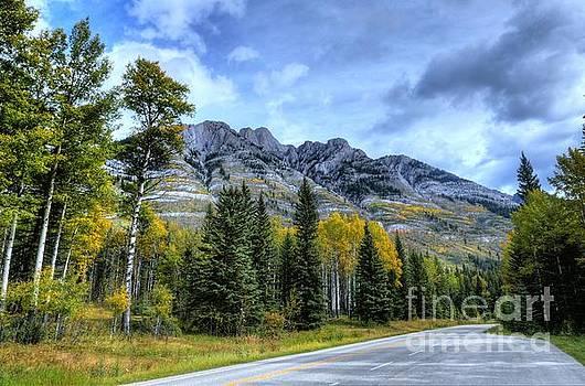Bow Valley Parkway Banff National Park Alberta Canada V by Wayne Moran
