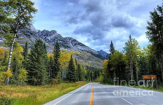 Bow Valley Parkway Banff National Park Alberta Canada VI by Wayne Moran