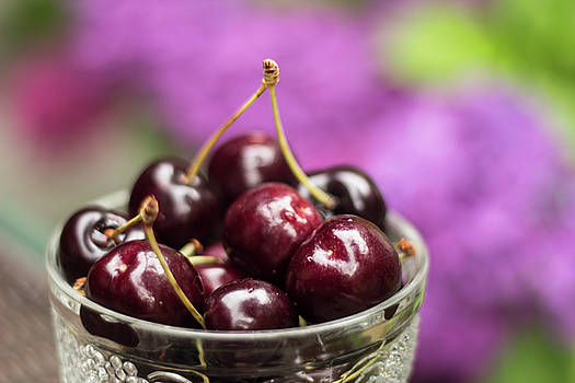 Bowl of Cherries by Melodie Douglas
