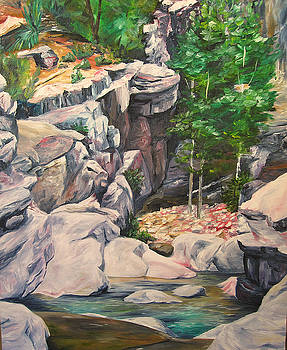 Box Canyon by Theresa Higby