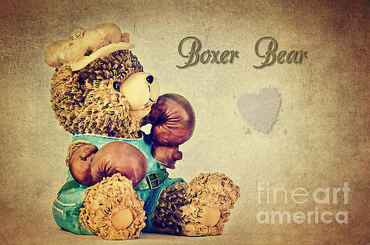 Boxer Bear by Angela Doelling AD DESIGN Photo and PhotoArt