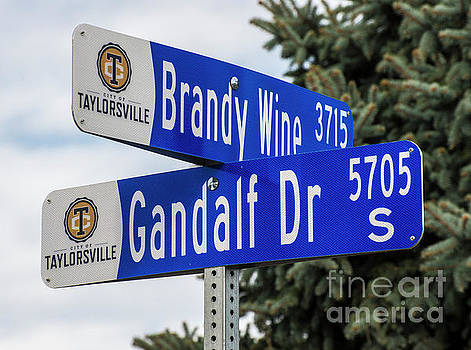 Brandywine and Gandalf Street Signs by Gary Whitton