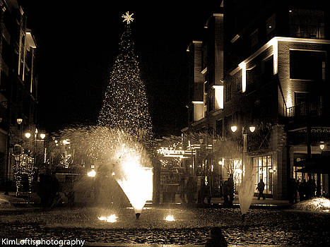 Branson landing Christmas  by Kim Loftis