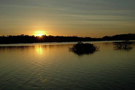 Brazilian Sunset by Tina Valvano