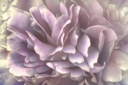Breeze by Darlene Kwiatkowski