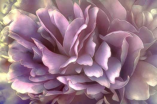 Breeze in deep pink by Darlene Kwiatkowski