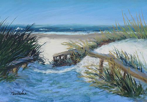Breezy Dunes by Sheila Psaledas