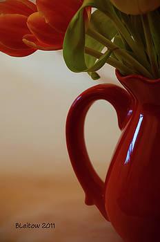 Brick Red Vase by Brenda Leitow