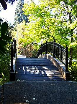 Bridge at Lithia Park by Becca  Feldman