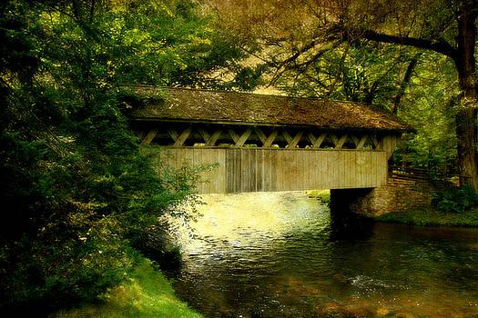 Joel Witmeyer - Bridge at Red Mill