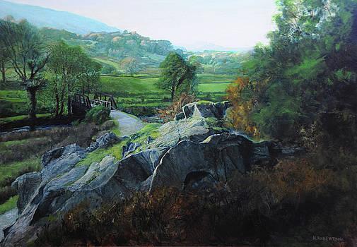 Harry Robertson - Bridge below Aberglaslyn