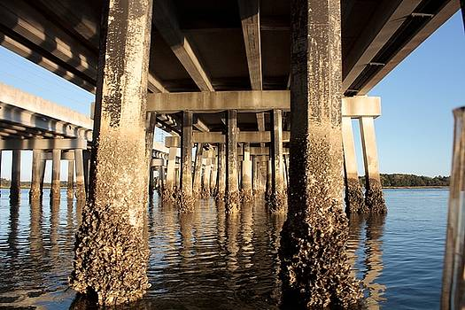 Bridge Pilings by Thomas Marchessault