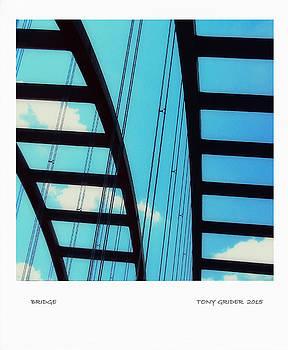 TONY GRIDER - Bridge Polaroid Snapshot