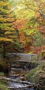 Bridge to a Dream by Gary Zimmerman