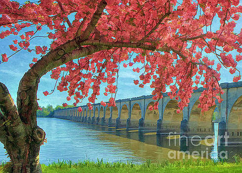 Bridges And Blossoms by Geoff Crego