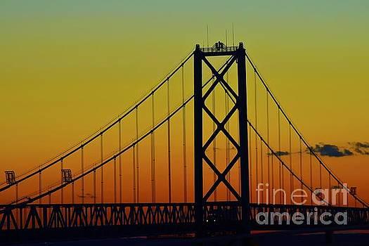 Bridges by Tracy Rice - Photographer