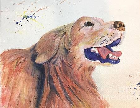 Bright Dog by Lucia Grilletto