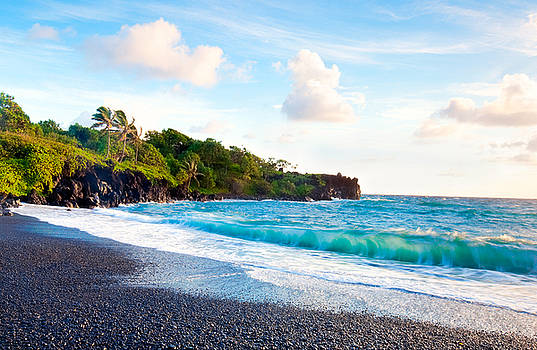 Bright Hawaii Sea by Monica and Michael Sweet