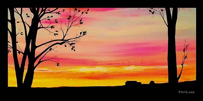 Bright Sunset by Jim Harris
